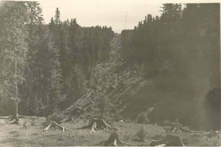 Ханты-Мансийская просека Долина Ручьев  июль 1960 года